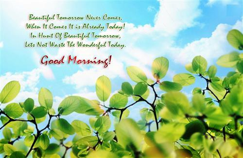 Beautiful Good Morning Wish Quotes for Have Good Day Wallpapers
