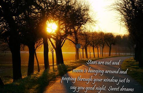 Good Night Sweet Dreams HD Quote Wallpaper