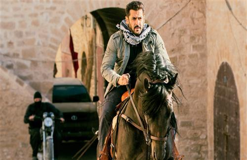 Salman Khan Horse Riding in Tiger Zinda Hai Film Wallpaper