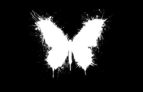 Butterfly Black Vector Design HD Wallpapers