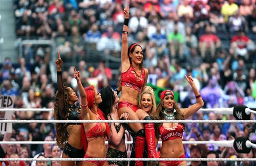 Brie Bella Popular WWE Female Wrestler Photo