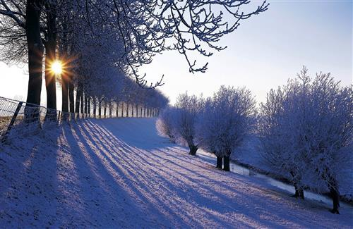 Beautiful Winter Wallpapers in Netherlands Country