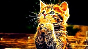 3D Photo of Cute Cat