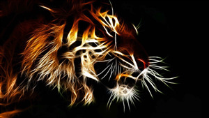 3D Tiger 4K Background Wallpapers
