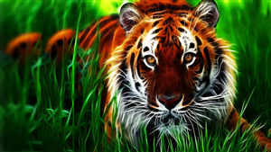 Animal Tiger 3D Wallpaper