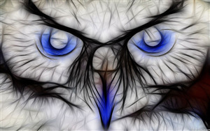 White Owl 3D Wallpaper