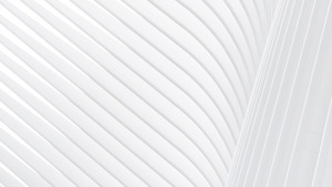 White Stripe Pattern Abstract Wallpaper