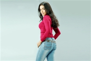 Bollywood Actress Asin Thottumkal in Jeans HD Wallpaper