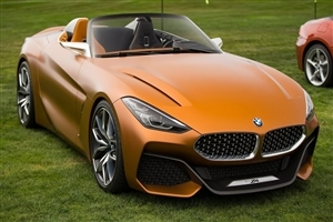 Superb Orange BMW Z4 Car