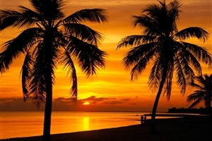 Beautiful Sunset View on Beach Wallpaper