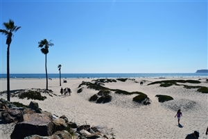 Coronado Beach San Diego CA United States Wallpapers