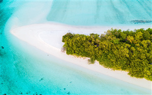 Island Beach Aerial View Photo