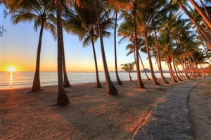 Palm Cove Queensland Beach Wallpapers