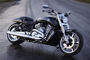 Harley Davidson Bike on Road Image