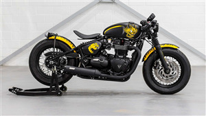 Triumph The Dots Yellow Bike Photo