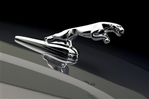 Jaguar Car Logo Photo