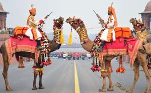 BSF Camel Cavalry on the Rajpath in India