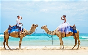 Couple Enjoy Camel Riding at Beach