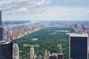 Central Park in New York City Travel Wallpaper