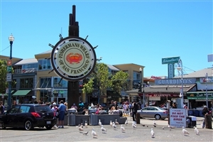 Fishermans Wharf San Francisco Travel Wallpaper