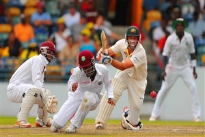 Michael Hussey Australian Cricketer Play Attacking Shot in Test Match again West Indies Photo