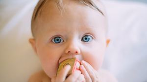 Charming Baby Chewing Toy Wallpapers