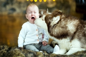 Cute Crying Baby With Dog Wallpapers