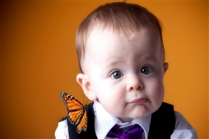 Cute White Baby with Butterfly HD Photos