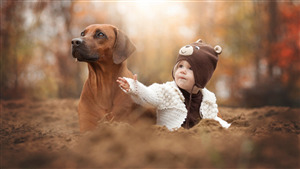 Gallant Baby Boy with Dog Photo