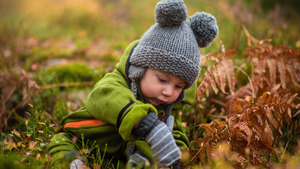 Lovely Baby Boy Seating in Garden HD Wallpapers