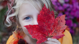 Pretty Girl Autumn Leaf 4K Image