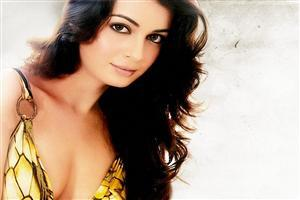 Hot Dia Mirza Photo