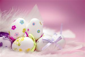 Happy Easter Eggs Gift in Pink Background