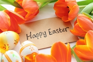 Happy Easter HD Photo Background