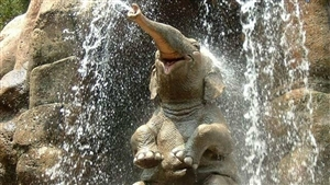 Elephant Bath in Waterfall Funny Photo
