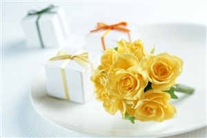 Yellow Rose Flower HD Wallpapers