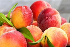 Fresh Peaches Fruits Wallpaper