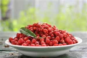 Fruit Raspberry Wallpapers