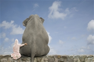 Baby Seatting Near Big Elephant Funny Wallpapers