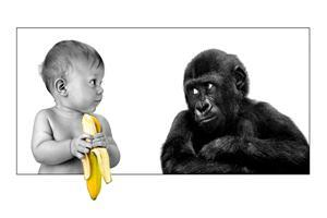 Funny Child Eating Banana in Front of Monkey