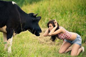 Funny Lady Copy the Cow Action