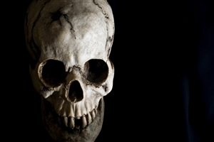 Skull Horror HD Desktop Background Wallpaper