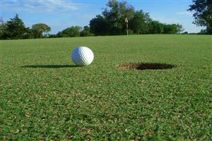 Golf Ball Near Success Pics
