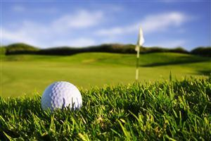 Golf Ball in Green Grass Pics