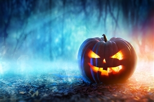 Festival Halloween Pumpkin HD Wallpapers