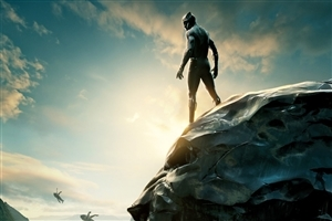 Black Panther 2018 Movie HD Wallpaper