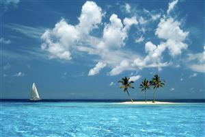 Beautiful Coconut Trees in Small Island Wallpaper