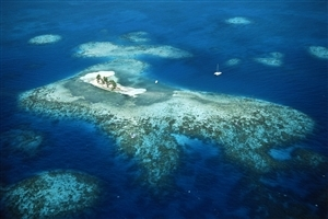 Beautiful Island in Belize Country in North America Wallpaper