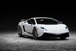 White Lamborghini Gallardo Car Wallpapers