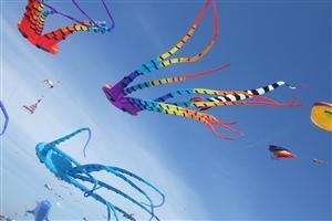 Beautiful Kite Flying in Sky